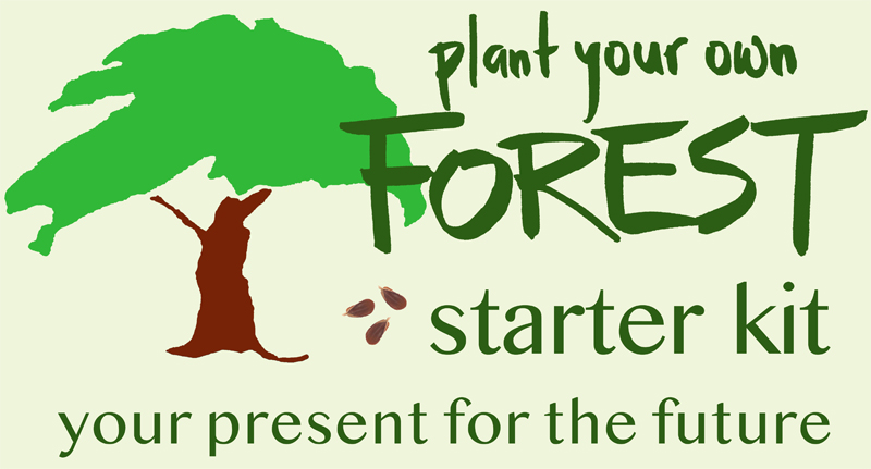 forest starter kit logo